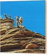Zion Bighorn Sheep Wood Print