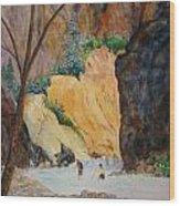 Zion Hike Wood Print