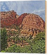 Zion National Park In Summer Wood Print