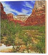 Zion Park Canyon Wood Print