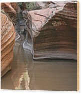 Zion Puddle Wood Print