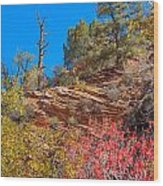 Zion Reds Wood Print