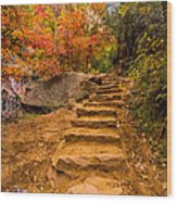 Zion Staircase Wood Print