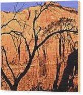 Zion Tree Wood Print