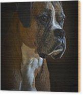 Zoey Wood Print by Ken Johnson