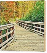 Zoom Zoom Walking Path Wood Print