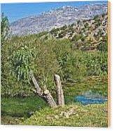 Zrmanja River And Velebit Mountain Wood Print
