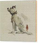 A Terrier - Sitting Facing Left Wood Print by Peter de Wint
