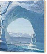 Angel And Iceberg Wood Print