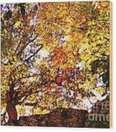 Autumn High Wood Print