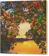 Autumn Leaves A View Wood Print