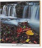 Autumnal Falls Wood Print