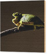 Chameleon On Branch Wood Print