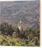 Church Of St Mary Magdelen Mount Of Olives  Jerusalem Wood Print