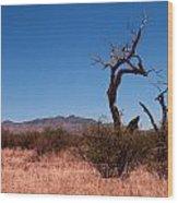 Dos Cabezas Mountains Wood Print