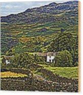 Duddon Valley Wood Print