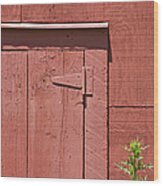 Faded Red Wood Barn Wall Wood Print