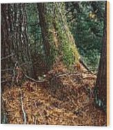 Fall Carpet Wood Print