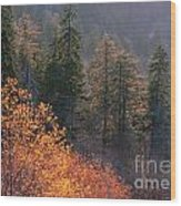 Great Smoky Mountains Morning Wood Print