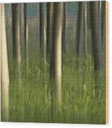 Green Alameda  Wood Print