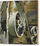 Iron Gate Wood Print by Jacqui Collett