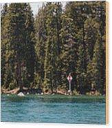 Lake Tahoe Sugar Pine Point Light Wood Print