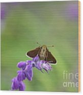 Little Skippers Happy Place Wood Print