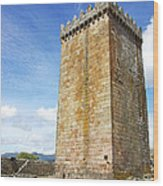 Melgaco Castle  In The North Of Portugal Wood Print by Inacio Pires