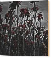 Mono Flowers Wood Print