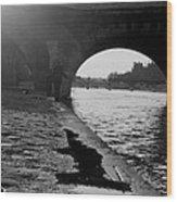 Paris Shadow Fisherman 1964 Wood Print
