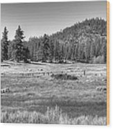 Prairie In South Lake Tahoe Wood Print