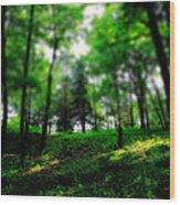 Simply Spring Wood Print by Bob Orsillo