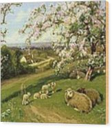 Spring - One Of A Set Of The Four Seasons  Wood Print