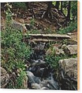 Stream In Tall Pines Wood Print