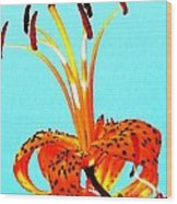 Turquoise And Tiger Lily Wood Print