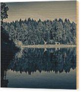 Unterer Kellerhalsteich Wood Print