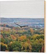 001 Letchworth State Park Series  Wood Print