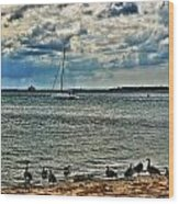 001 On A Summers Day  Erie Basin Marina Summer Series Wood Print