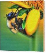 001 Sleeping Bee Wood Print
