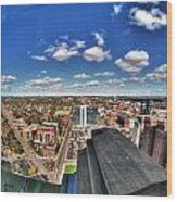 0017 Autumn Days Of Buffalo Ny Birds Eye Wood Print