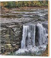 0017 Letchworth State Park Series  Wood Print