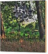 002 Bat Homes Wood Print