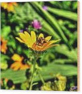 002 Busy Bee Series Wood Print