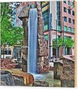 002 Fountain Plaza Wood Print