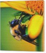 002 Sleeping Bee Series Wood Print