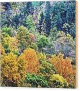 0026 Letchworth State Park Series   Wood Print
