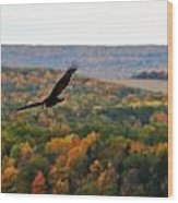 003 Letchworth State Park Series  Wood Print