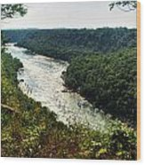 003 Niagara Gorge Trail Series  Wood Print