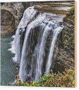 0039 Letchworth State Park Series Wood Print
