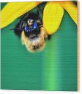 004 Sleeping Bee Series Wood Print